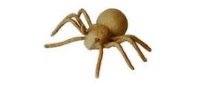 papier mache spider
