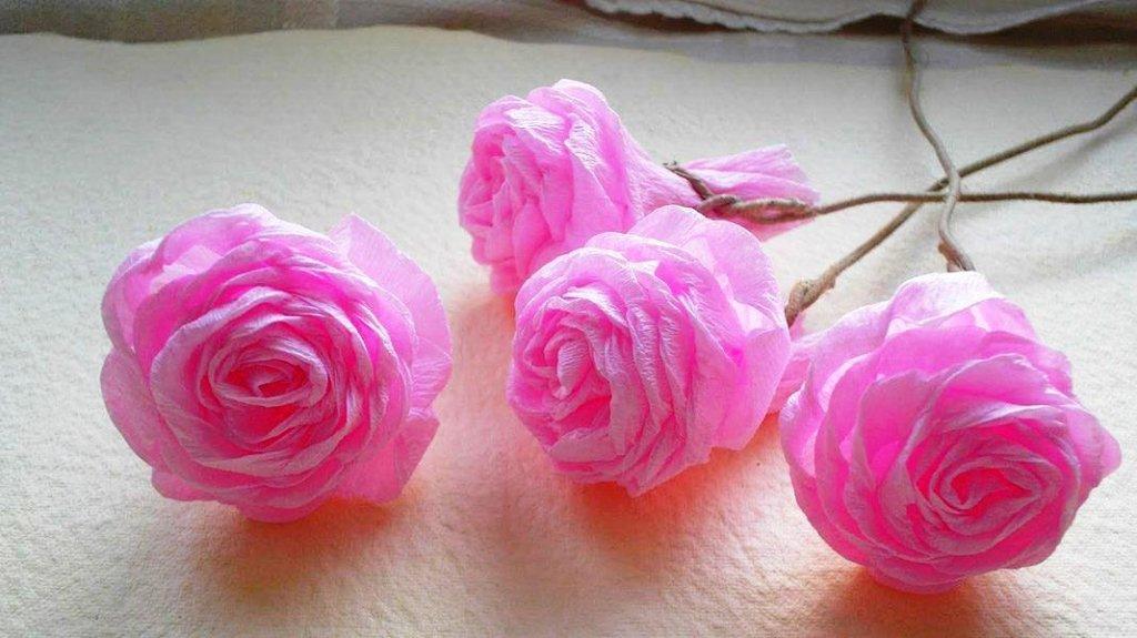розовые розы из гофрированной бумаги